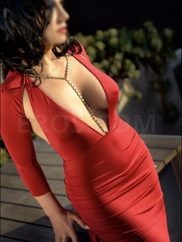 Image result for san francisco escorts